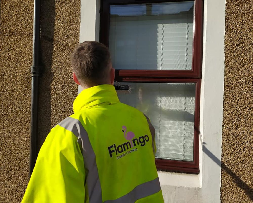 ayr window cleaning company