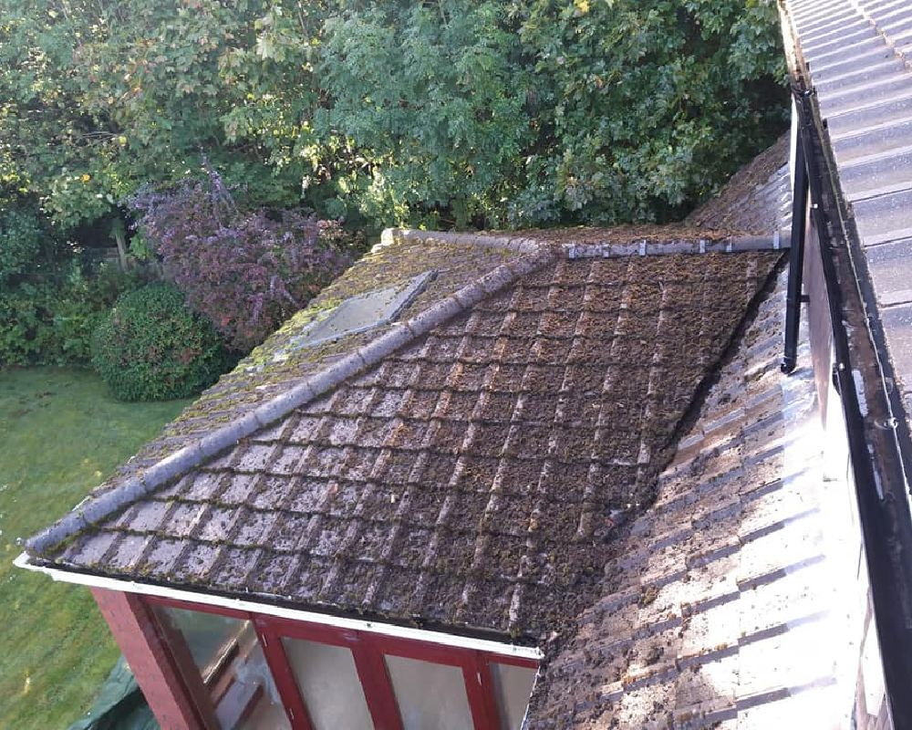 roof cleaning ayr